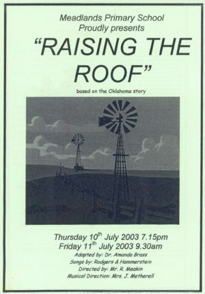Meadlands Raising the Roof Programme 2003