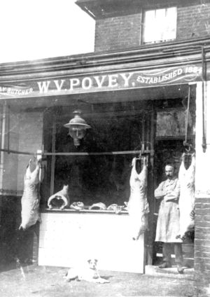 Povey - Butchers