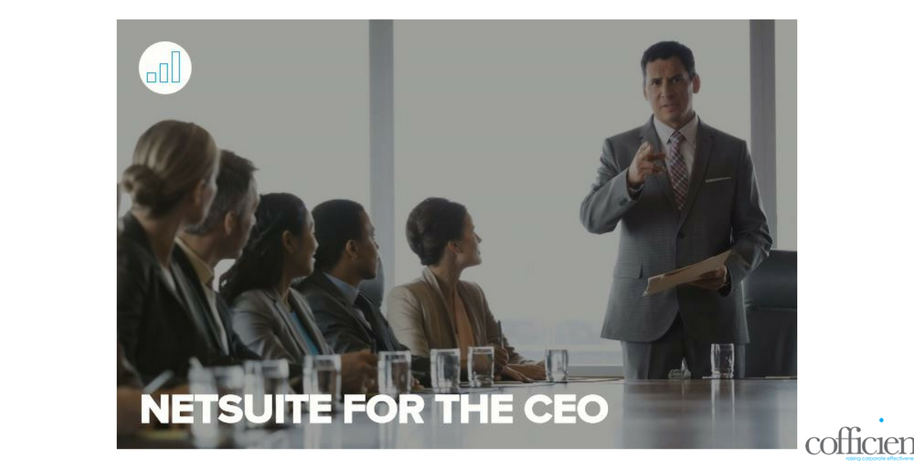 NetSuite for CEO
