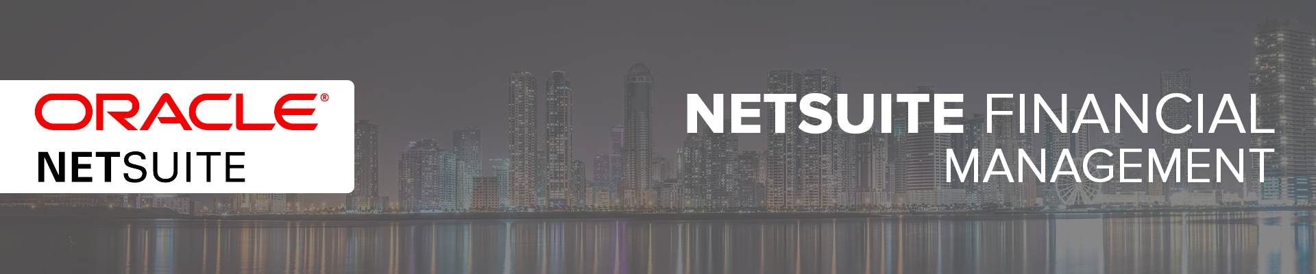 NetSuite Financial