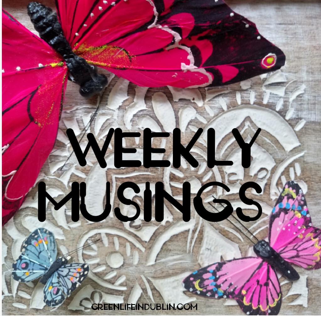 Weekly Musings – November 2018