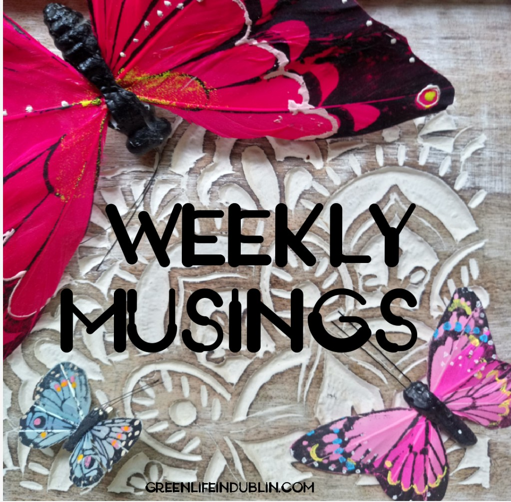 Weekly Musings – November 2018