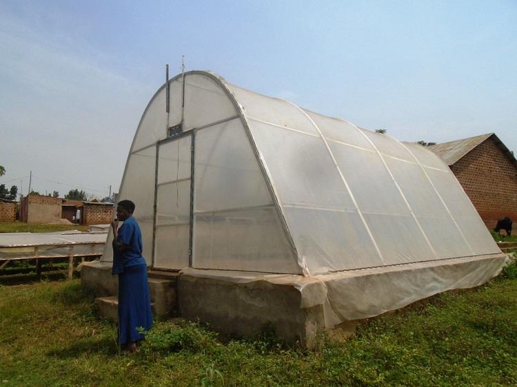 A farmer stands beside her solar dryer
