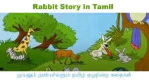 Rabbit Story in Tamil