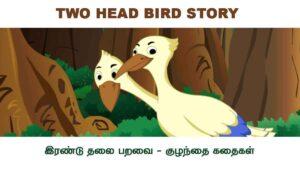 Two Head Bird Story - இரண்டு தலை பறவை