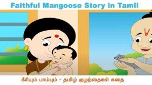 Faithful Mangoose Story in Tamil