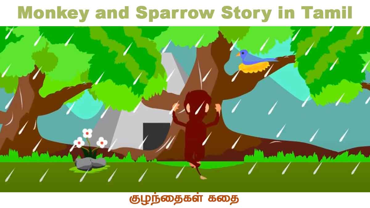 Monkey and Sparrow Story in Tamil