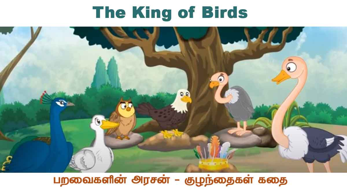 The-King-of-Birds