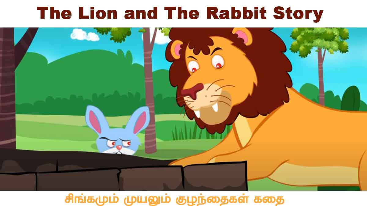 The Lion and The Rabbit Story
