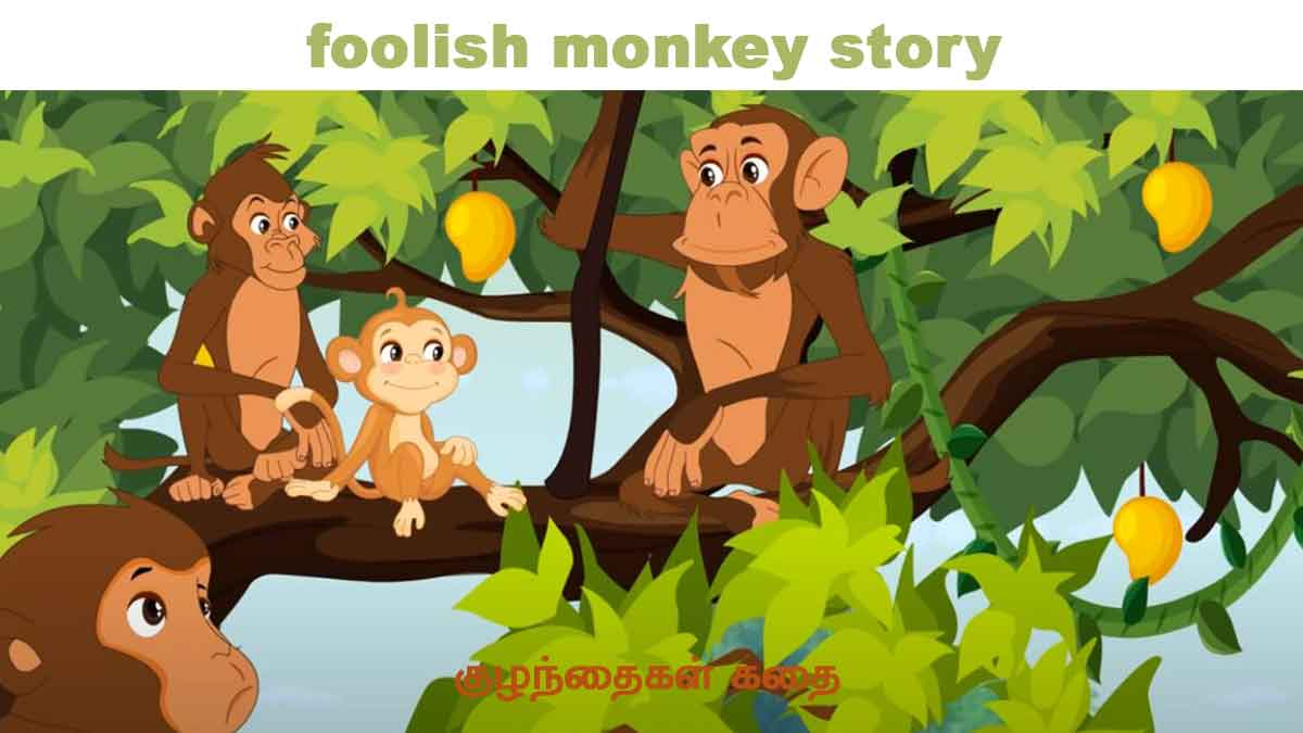 foolish monkey story