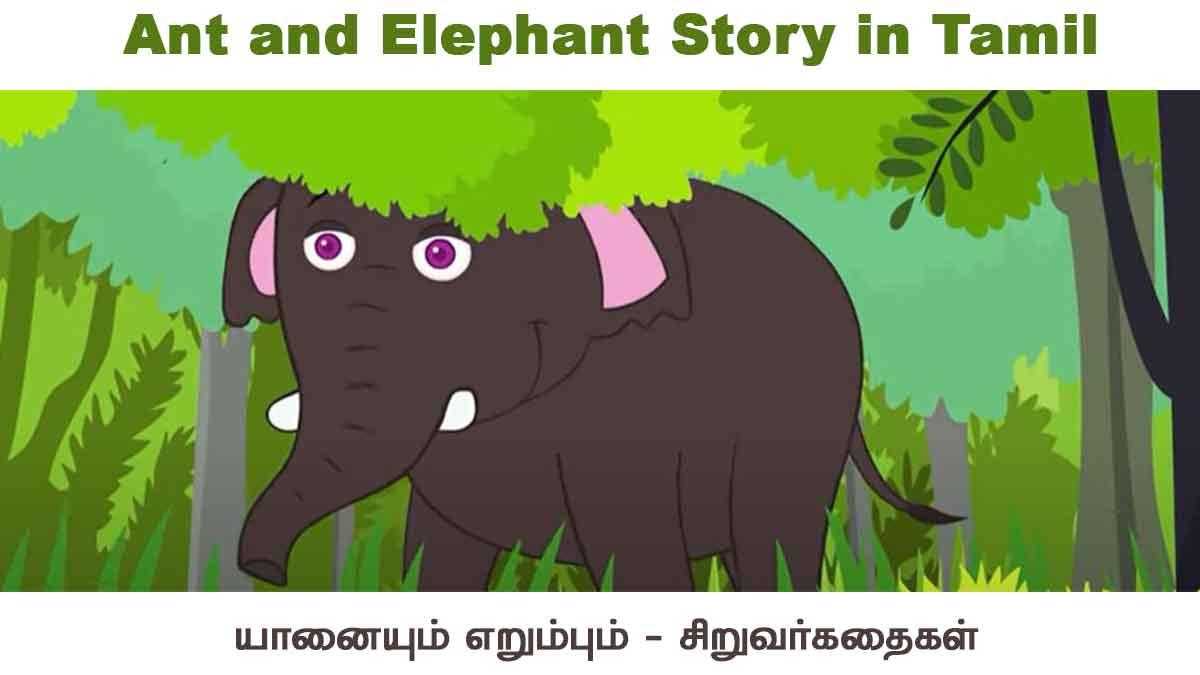Ant and Elephant Story in Tamil – யானையும் எறும்பும் சிறுவர் நீதி கதை