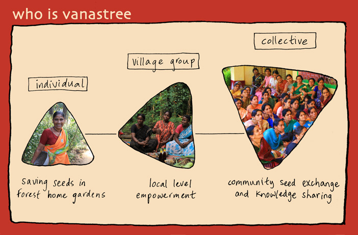 Vanastree About Graphic 3a