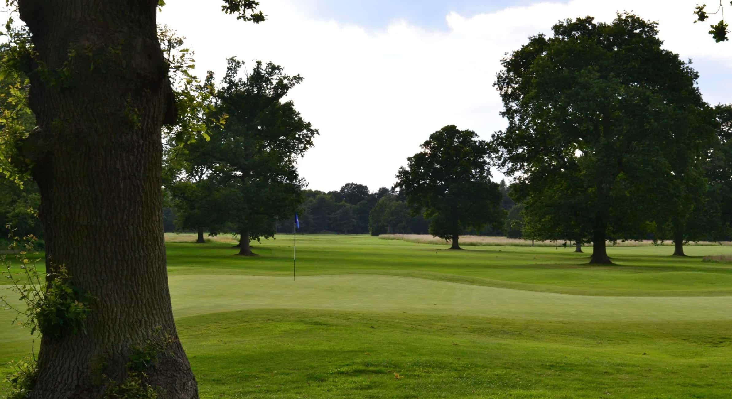 18th hole Woodhall Spa Bracken