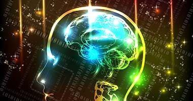 Better collaboration with knowledge of the brain