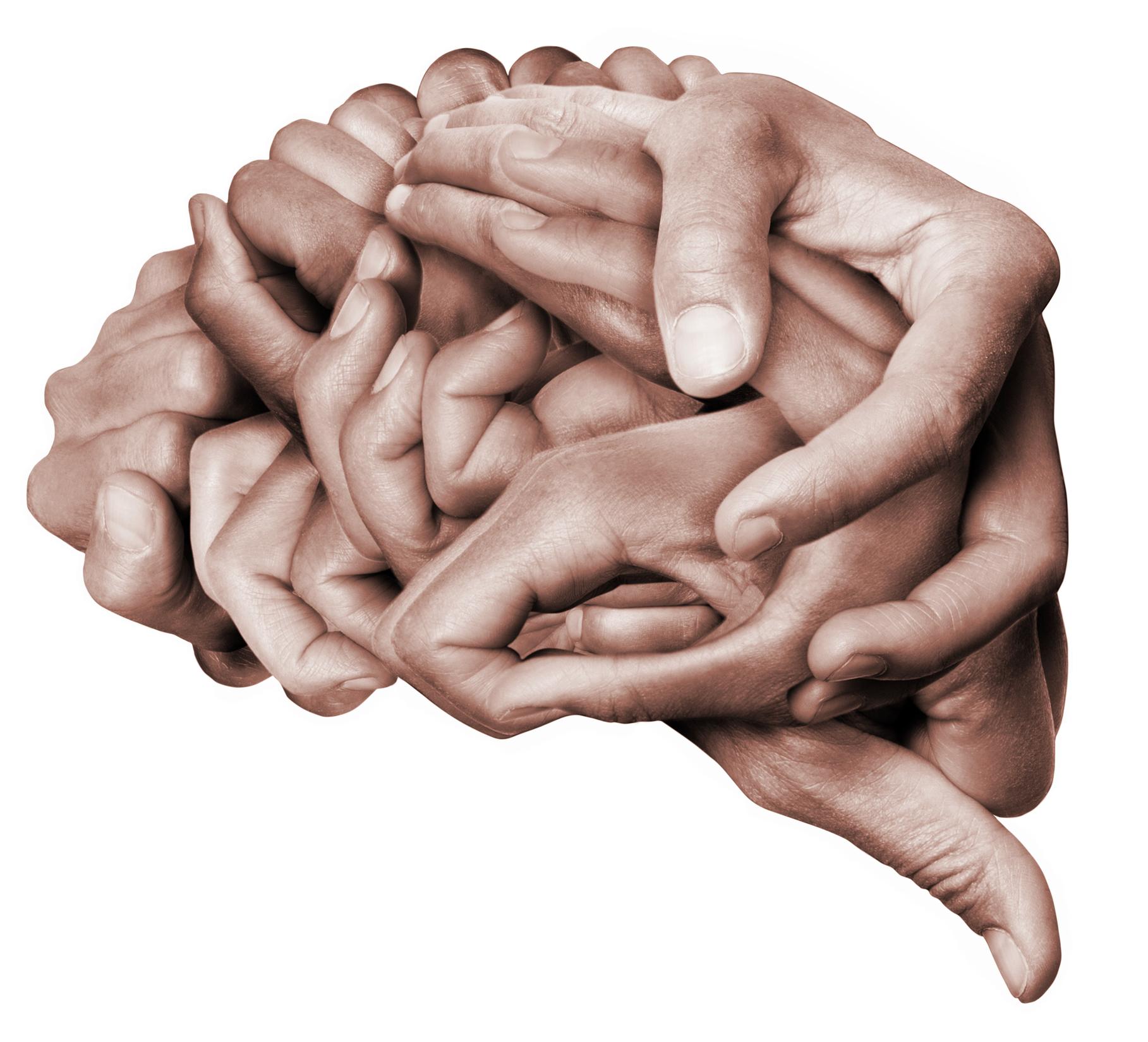 hjärnsmart organisation