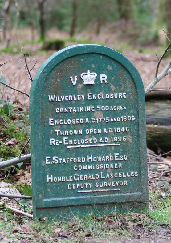 Wilverley Inclosure