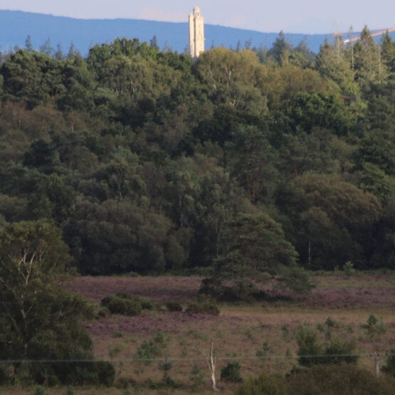 View from Turf Hill, Burley