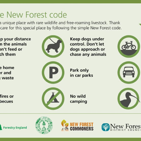 New Forest Code
