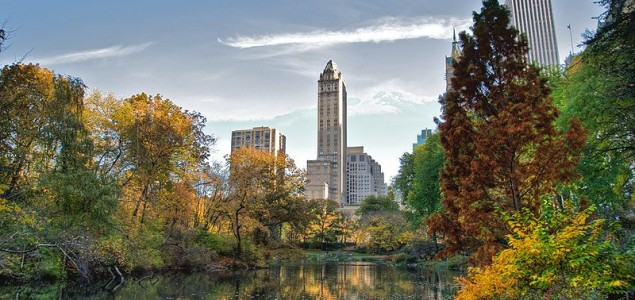 Central Park offers the best of New York attractions