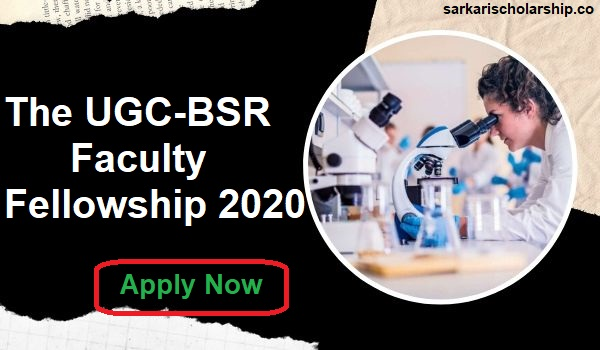 UGC-BSR Faculty Fellowship 2020