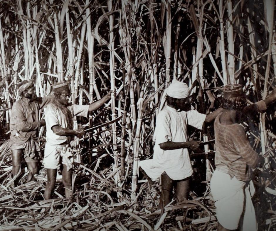 પૂર્વ આફ્રિકામાં 1895માં થેપલાં, ડુંગળી અને ખિચડી ખવાતાં હતાં. આ અસલ ગુજરાતી ડિશ અહીંથી ચરોતરના પાટીદારો લઈને ગયા હતા. તમને ખબર છે એ પટેલ સાહસિકો કોણ હતા?