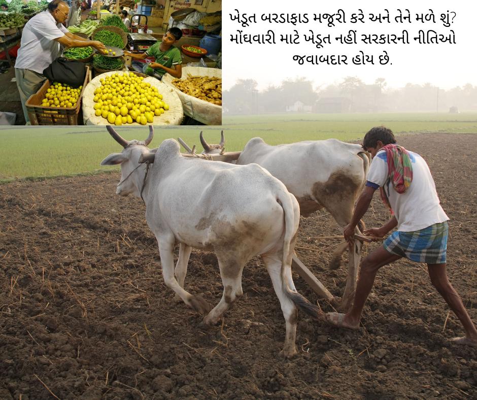 આઝાદ ભારત મોંઘવારીનું ગુલામ! ખેડૂતને અન્યાય કરવાથી ખાવાનું સસ્તું નહીં થાય,પ્રોબ્લેમ માલ કે પુરવઠાનો નહીં, સરકારી દાનતનો છે
