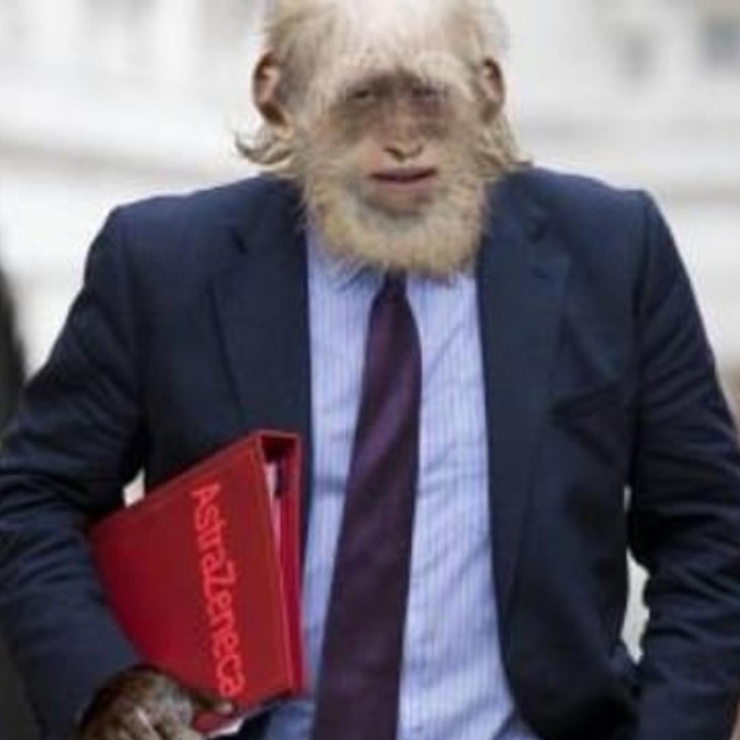 ઓક્સફોર્ડની કોરોના વેક્સિનથી માણસ વાંદરો બની  જશે?: સોશિયલ મીડિયામાં વાઈરલ મેસેજથી હોબાળો