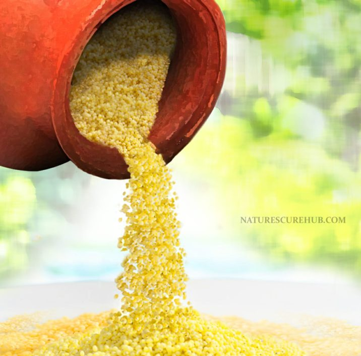 FOXTAIL MILLET BENEFITS 1
