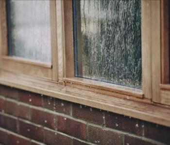 Accoya-Pencere