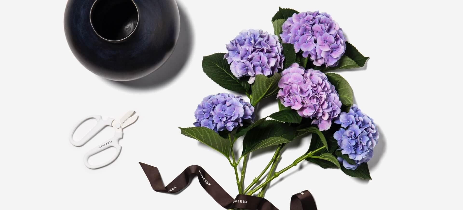 Image of purple flowers by FLOWERBX