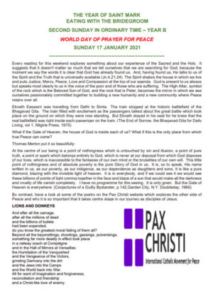 January Newsletter 17