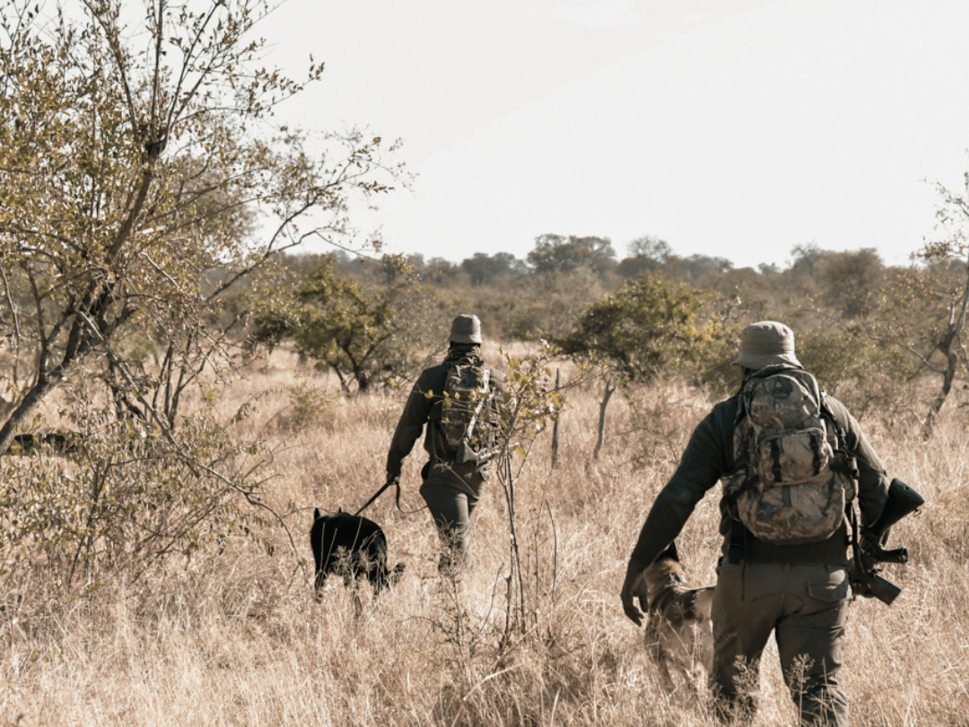 World Ranger Day – Celebrating The Unsung Heroes