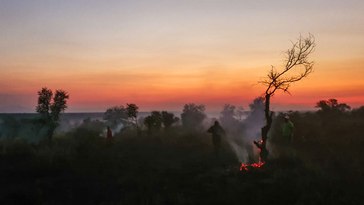 Tanda Tula - fighting fire at sunset in the Timbavati, South Africa