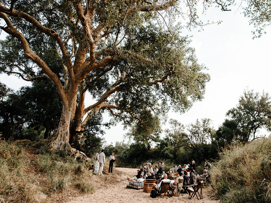 Why Get Married On Safari?