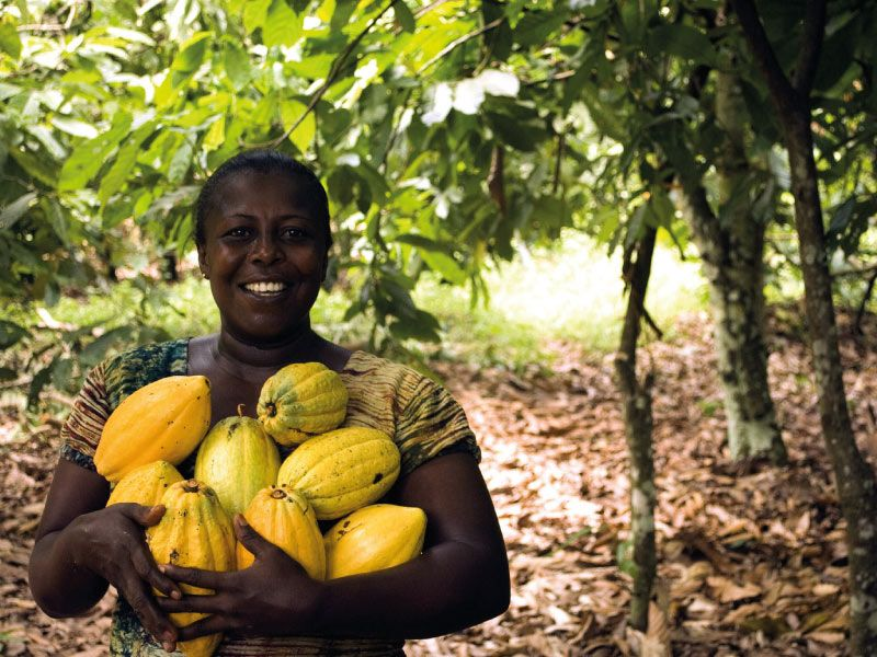African female farmer holding cocoa
