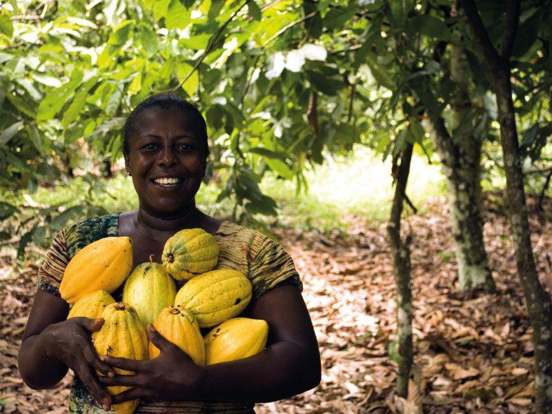 African female farmer holding cocoa