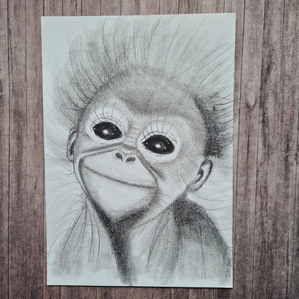 graphite orangutan