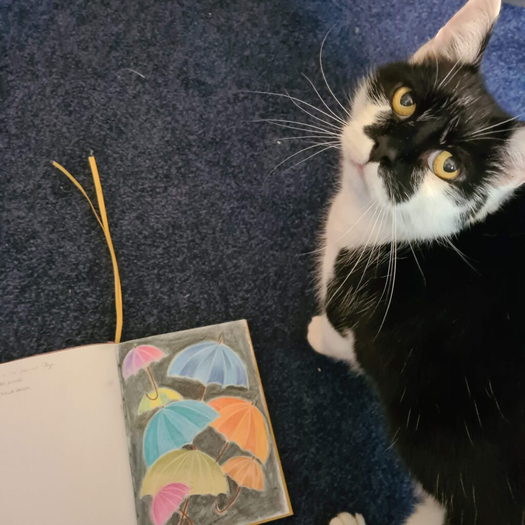 Max wants attention when I am trying to photograph my work