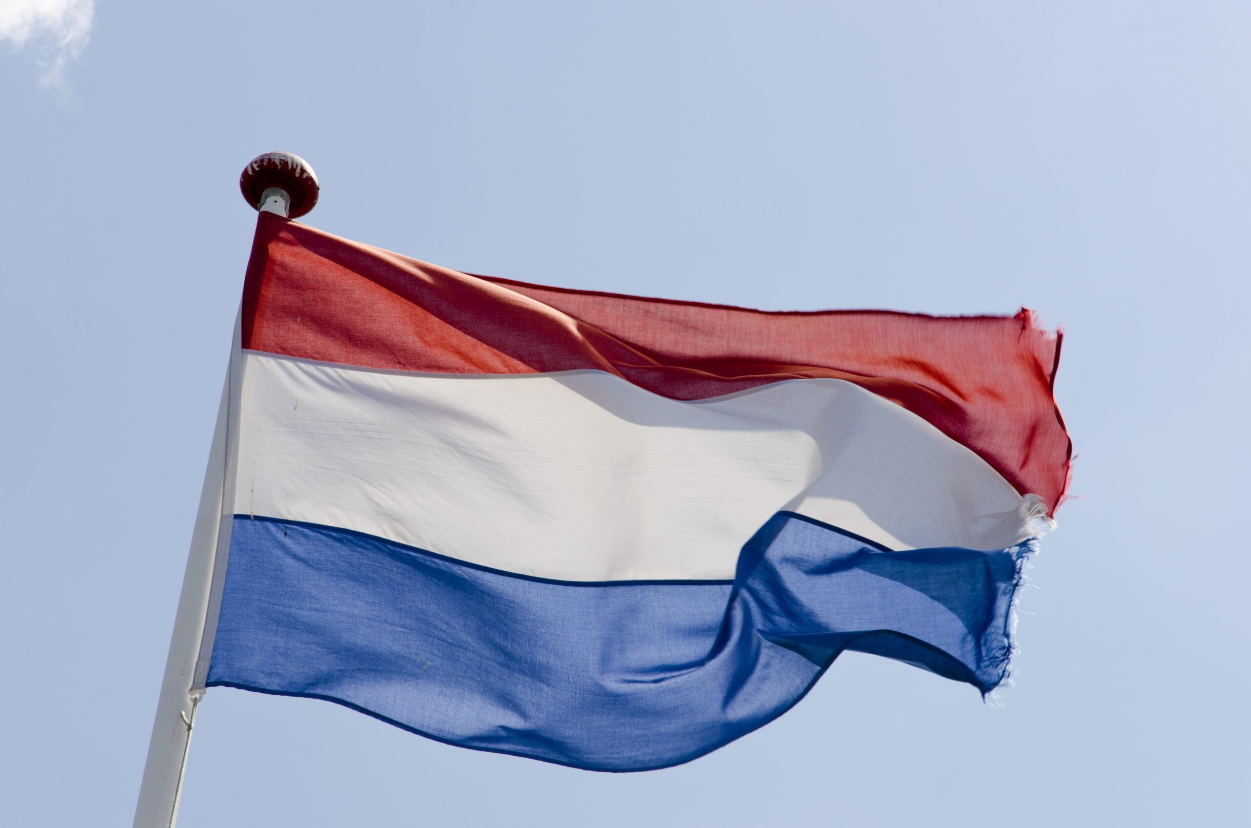 Press release: General elections in The Netherlands