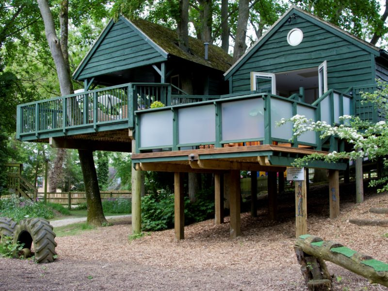 Will's Tree House