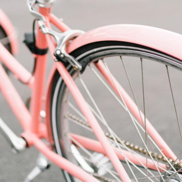 pink ladies bike