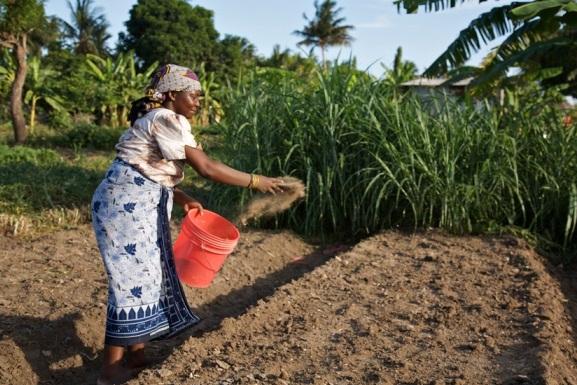 improving soil fertility by fertilizers