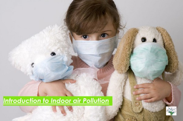 Indoor Air Pollution – Introduction