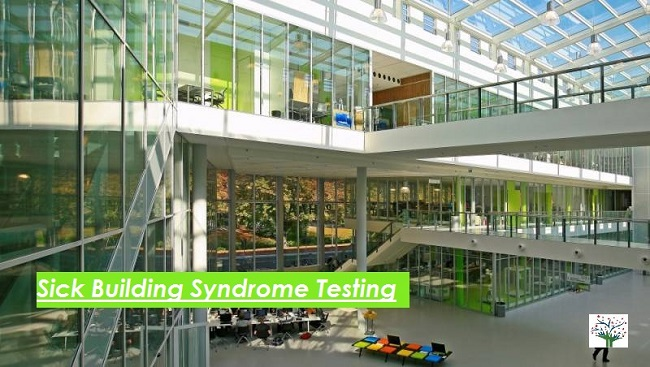 Sick Building Syndrome Testing