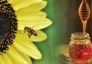 We all know that bees collect honey, bees mainly make honey from the juice of flowers. The aroma, color and taste of honey mainly depends on the type of flowers. Talking about nutrients, 1 teaspoon of honey (21 grams) contains 64 calories and 17 grams of sugar, fructose, glucose, maltose and sucrose are also found in honey.