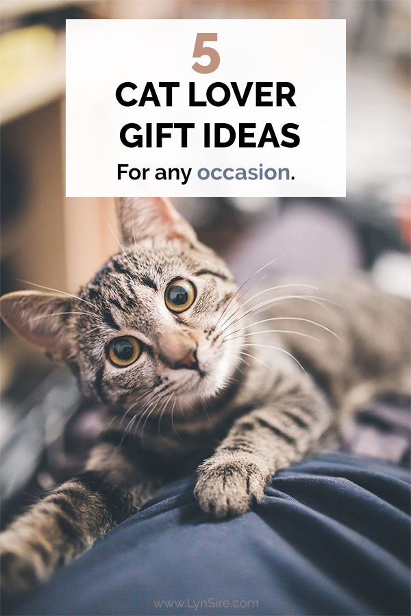 5 Cat Lover Gift Ideas for any occasion