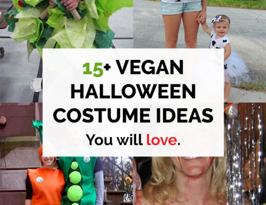 15 Vegan Halloween Costume Ideas you will love