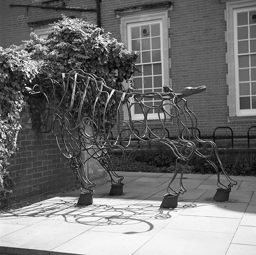 yashica 635 tlr ilford fp5 120 medium format sculpture classic outdoor bull summer southill park crowthorne berkshire