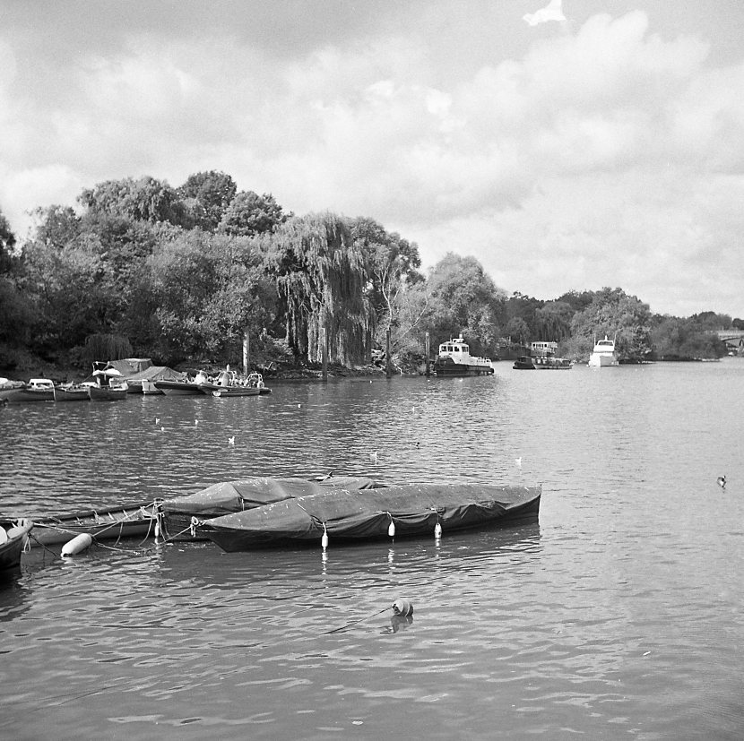yashica 635 tlr ilford hp5 richmond london thames black white b&w film medium format 120 boat trees summer river boat