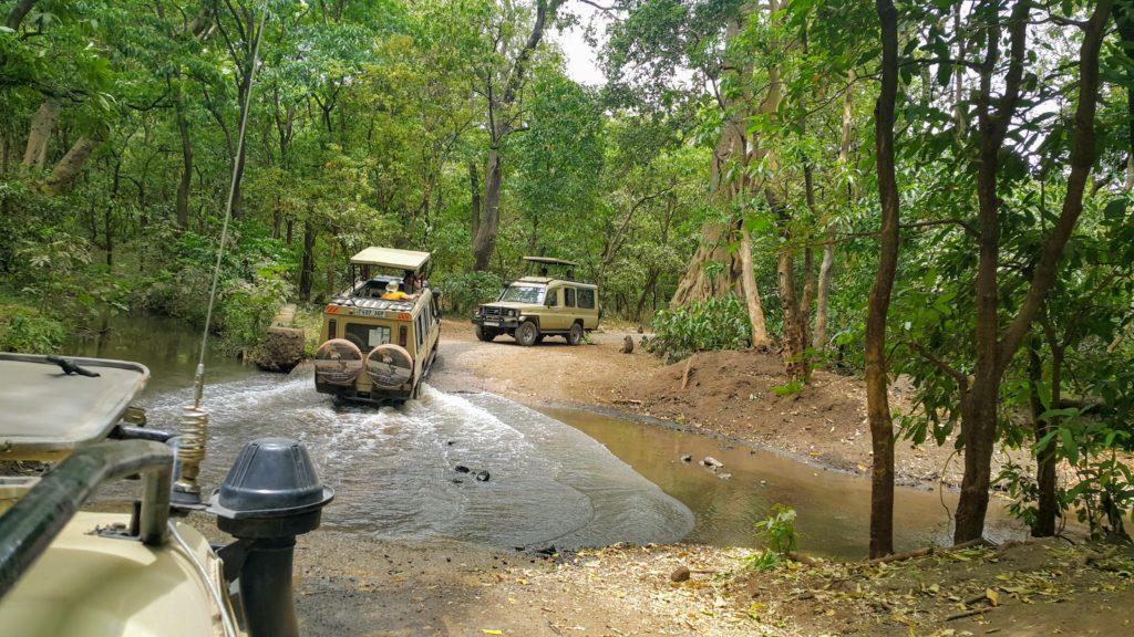 Özel Safari Araçları